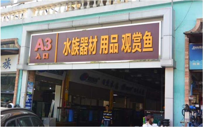 Aquarium Zone in Guangzhou Yuehe Fish and Pet Market