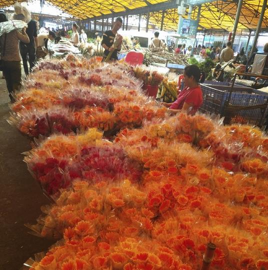 Lingnan Flower Market in Guangzhou, China-10