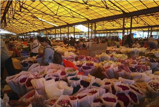 Lingnan Flower Market in Guangzhou, China-2