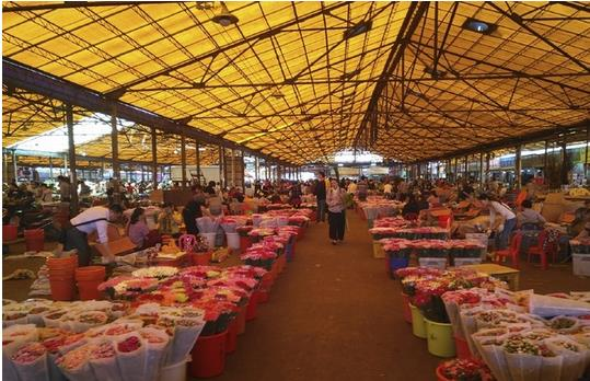 Lingnan Flower Market in Guangzhou, China-3