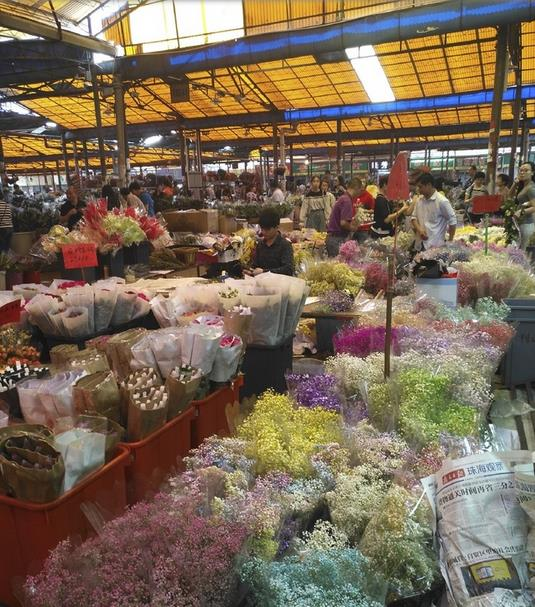 Lingnan Flower Market in Guangzhou, China-4