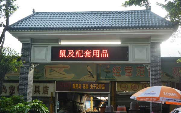 Pets Zone in Yuehe Fish and Pet Market