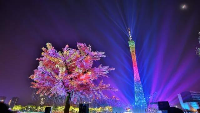 Light of the Tree--The 7th Guangzhou International Light Show